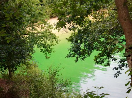 Photo looking down on Divers Cove Open Water Swimming and Scuba Diving in Godstone, Surrey - InTandridge