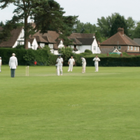 InTandridge v Woldingham Village Cricket Club - Charity T20