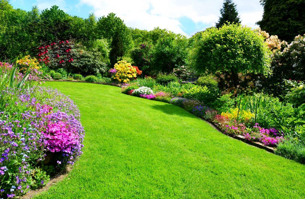 Grass 2 Long Gardening & Landscaping