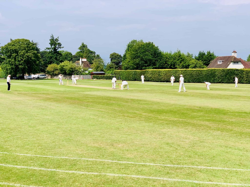 Charity Cricket Match - inTandridge Tigers v Woldingham Village Cricket Clib