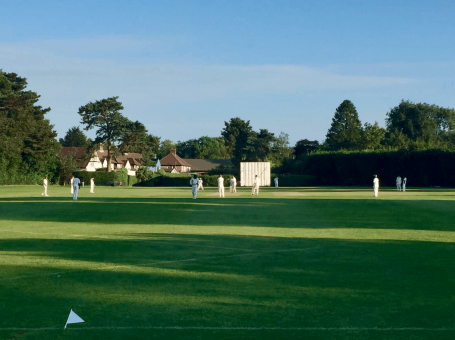 Woldingham Village Cricket Club v inTandridge Tigers, charity T20